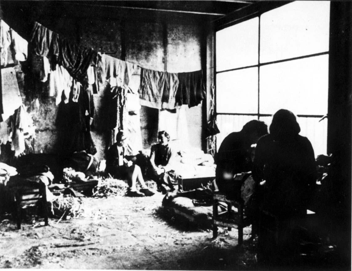 סקר שנערך בקרב האוכלוסייה הבוגרת בצרפת מצביע על בורות חמורה בנושא השואה; 25% מבני דור המילניום לא שמעו על השואה או שלא בטוחים ששמעו עליה